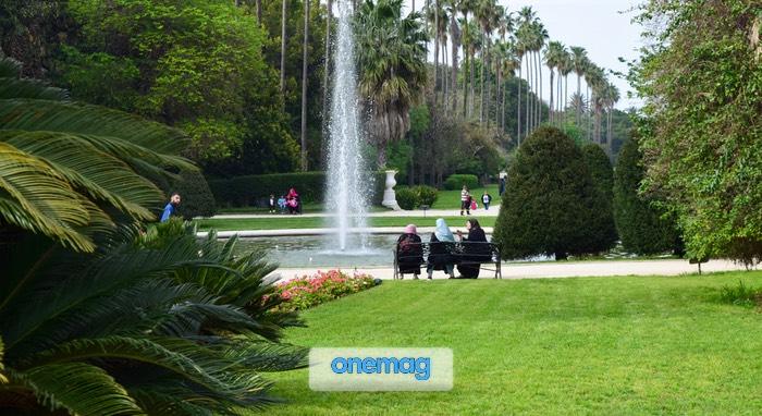 Descrizione del Giardino Botanico di Algeri